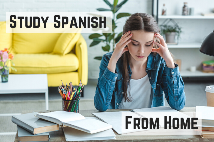 Study Spanish From Home